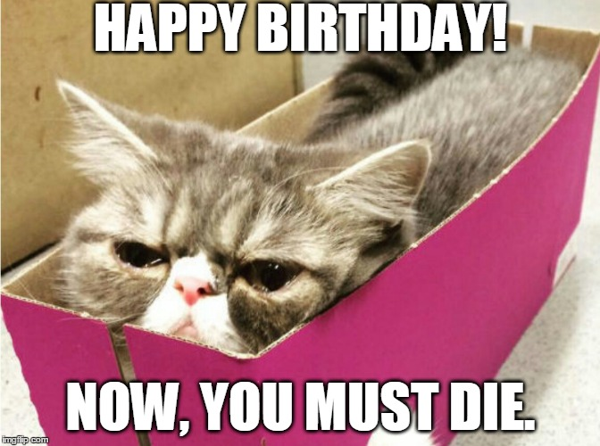 Funny Birthday Memes For Myself : And no more imgflip