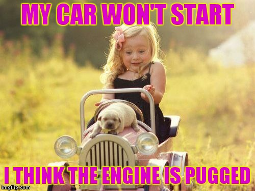 All you can really say is awwww ;) | MY CAR WON'T START I THINK THE ENGINE IS PUGGED | image tagged in kids,pugs,aww | made w/ Imgflip meme maker