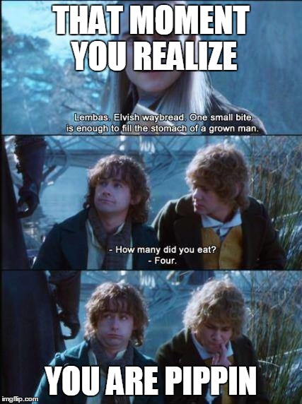 Fool of a Took |  THAT MOMENT YOU REALIZE; YOU ARE PIPPIN | image tagged in that moment,merry and pippin,hungry | made w/ Imgflip meme maker