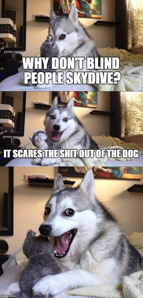 Bad Pun Dog Meme | WHY DON'T BLIND PEOPLE SKYDIVE? IT SCARES THE SHIT OUT OF THE DOG | image tagged in memes,bad pun dog | made w/ Imgflip meme maker