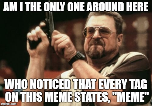 "AM I THE ONLY ONE AROUND HERE WHO NOTICED THAT EVERY TAG ON THIS MEME STATES, ""MEME"" 