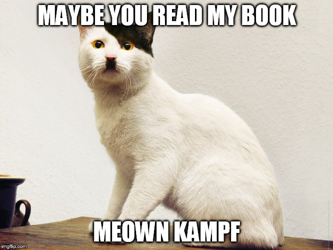 MAYBE YOU READ MY BOOK MEOWN KAMPF | made w/ Imgflip meme maker
