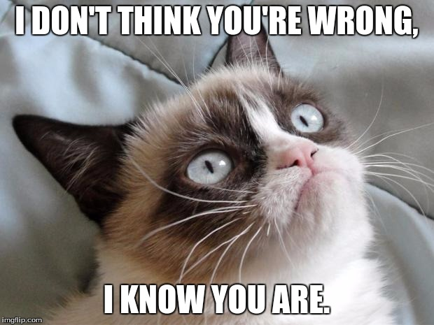 Grumpy cat | I DON'T THINK YOU'RE WRONG, I KNOW YOU ARE. | image tagged in grumpy cat | made w/ Imgflip meme maker
