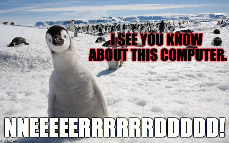 c | I SEE YOU KNOW ABOUT THIS COMPUTER. NNEEEEERRRRRRDDDDD! | image tagged in c | made w/ Imgflip meme maker