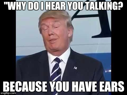 "Trump Duh |  ""WHY DO I HEAR YOU TALKING? BECAUSE YOU HAVE EARS 