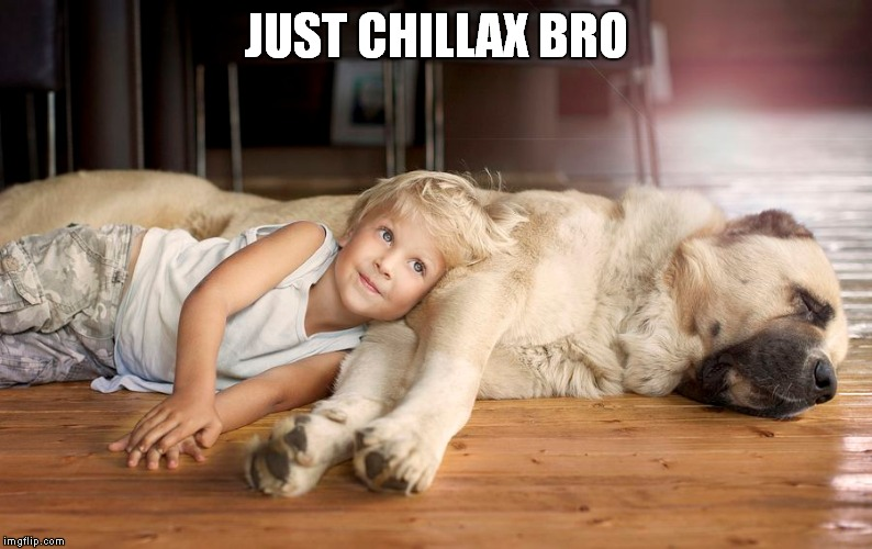 JUST CHILLAX BRO | made w/ Imgflip meme maker