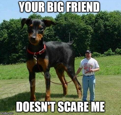 YOUR BIG FRIEND DOESN'T SCARE ME | made w/ Imgflip meme maker