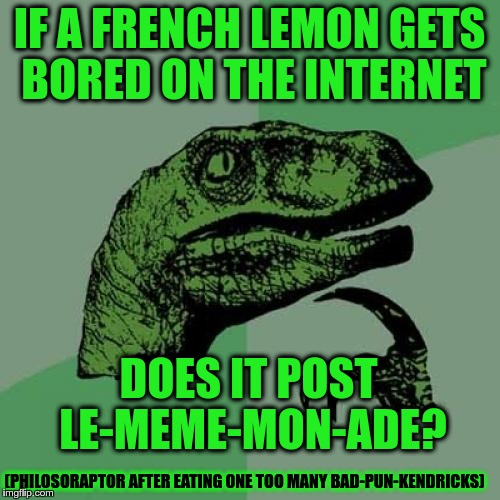 Philosoraptor's new diet... | IF A FRENCH LEMON GETS BORED ON THE INTERNET DOES IT POST LE-MEME-MON-ADE? (PHILOSORAPTOR AFTER EATING ONE TOO MANY BAD-PUN-KENDRICKS) | image tagged in memes,philosoraptor,french,bad pun anna kendrick,equi-bean-ium,meme | made w/ Imgflip meme maker