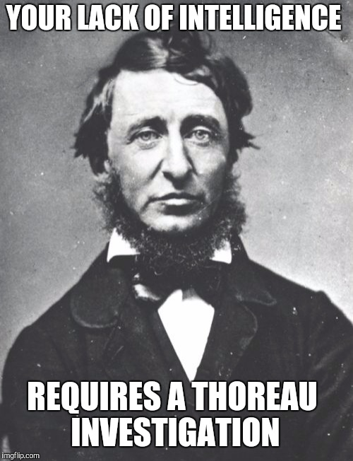 Investigate This | YOUR LACK OF INTELLIGENCE REQUIRES A THOREAU INVESTIGATION | image tagged in memes,henry david thoreau | made w/ Imgflip meme maker