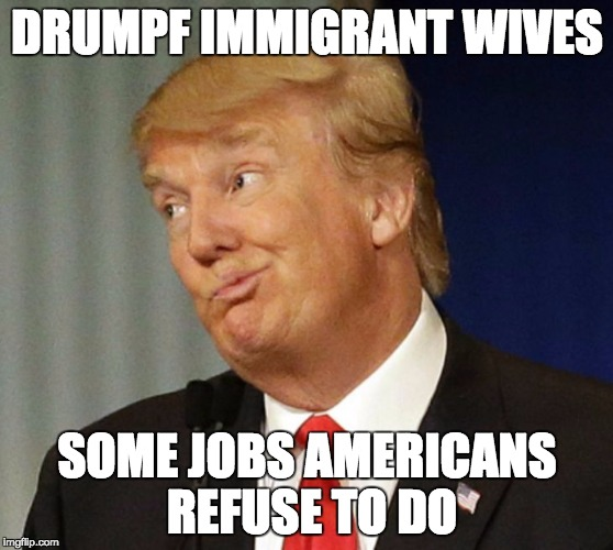 Donald Drumpf |  DRUMPF IMMIGRANT WIVES; SOME JOBS AMERICANS REFUSE TO DO | image tagged in donald drumpf | made w/ Imgflip meme maker