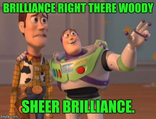 X, X Everywhere Meme | BRILLIANCE RIGHT THERE WOODY SHEER BRILLIANCE. | image tagged in memes,x,x everywhere,x x everywhere | made w/ Imgflip meme maker