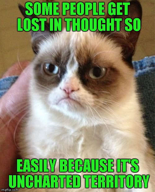 Grumpy Cat Meme | SOME PEOPLE GET LOST IN THOUGHT SO EASILY BECAUSE IT'S UNCHARTED TERRITORY | image tagged in memes,grumpy cat | made w/ Imgflip meme maker