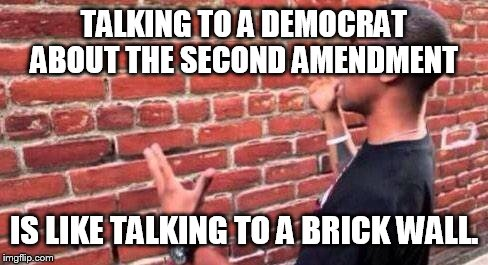 Brick Wall |  TALKING TO A DEMOCRAT ABOUT THE SECOND AMENDMENT; IS LIKE TALKING TO A BRICK WALL. | image tagged in brick wall | made w/ Imgflip meme maker