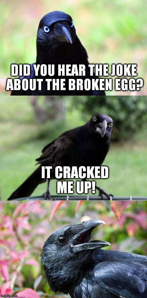 bad pun crow | DID YOU HEAR THE JOKE ABOUT THE BROKEN EGG? IT CRACKED ME UP! | image tagged in bad pun crow,egg,funny meme,broken,laugh,joke | made w/ Imgflip meme maker