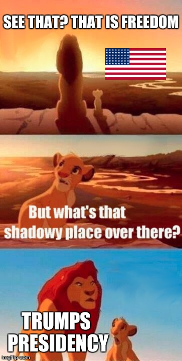 Simba Shadowy Place |  SEE THAT? THAT IS FREEDOM; TRUMPS PRESIDENCY | image tagged in memes,simba shadowy place | made w/ Imgflip meme maker