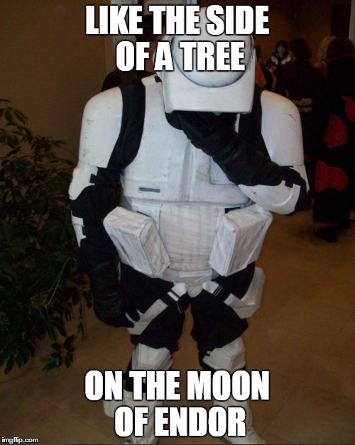 LIKE THE SIDE OF A TREE ON THE MOON OF ENDOR | made w/ Imgflip meme maker