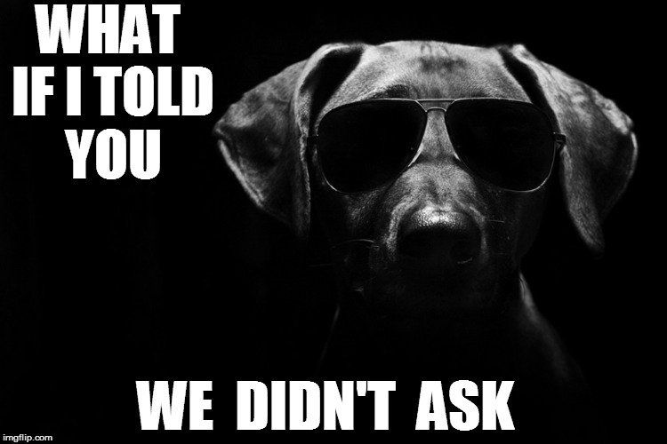 WHAT IF I TOLD YOU WE  DIDN'T  ASK | made w/ Imgflip meme maker