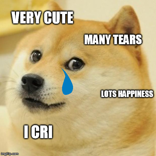 Doge Meme | VERY CUTE MANY TEARS LOTS HAPPINESS I CRI | image tagged in memes,doge | made w/ Imgflip meme maker