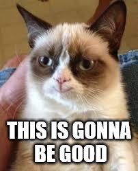 Grumpy Cat Happy Meme | THIS IS GONNA BE GOOD | image tagged in grumpy cat smile | made w/ Imgflip meme maker
