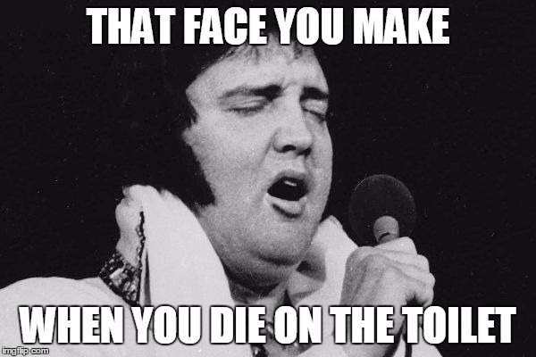 Elvis at large | THAT FACE YOU MAKE WHEN YOU DIE ON THE TOILET | image tagged in elvis at large | made w/ Imgflip meme maker