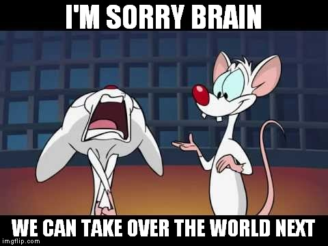 I'M SORRY BRAIN WE CAN TAKE OVER THE WORLD NEXT | made w/ Imgflip meme maker