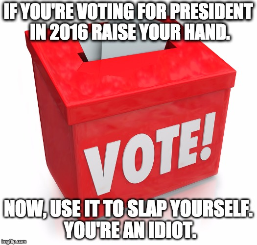 Non Voters | IF YOU'RE VOTING FOR PRESIDENT IN 2016 RAISE YOUR HAND. NOW, USE IT TO SLAP YOURSELF. YOU'RE AN IDIOT. | image tagged in don't vote,elections,rigged elections,vote,voters,voting | made w/ Imgflip meme maker