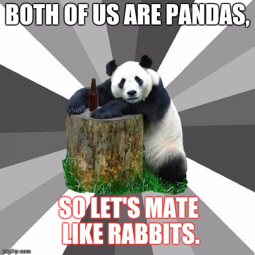Pickup Line Panda Meme |  BOTH OF US ARE PANDAS, SO LET'S MATE LIKE RABBITS. | image tagged in memes,pickup line panda | made w/ Imgflip meme maker