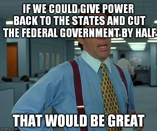That Would Be Great Meme | IF WE COULD GIVE POWER BACK TO THE STATES AND CUT THE FEDERAL GOVERNMENT BY HALF THAT WOULD BE GREAT | image tagged in memes,that would be great | made w/ Imgflip meme maker