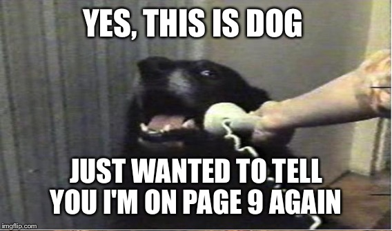 Just jumping on the band wagon.  | YES, THIS IS DOG JUST WANTED TO TELL YOU I'M ON PAGE 9 AGAIN | image tagged in lol,memes,page 9,lynch1979 | made w/ Imgflip meme maker