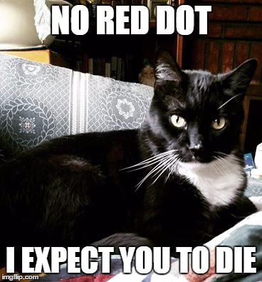 no red dot |  NO RED DOT; I EXPECT YOU TO DIE | image tagged in james bond,bond quotes,funny cat,memes,funny cat memes | made w/ Imgflip meme maker