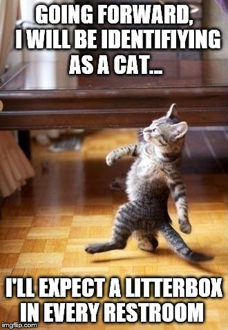 Cool Cat Stroll Meme |  GOING FORWARD,  I WILL BE IDENTIFIYING AS A CAT... I'LL EXPECT A LITTERBOX IN EVERY RESTROOM | image tagged in memes,cool cat stroll | made w/ Imgflip meme maker