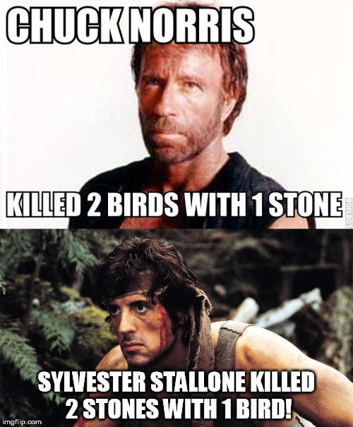 Sylvester Wins! | SYLVESTER STALLONE KILLED 2 STONES WITH 1 BIRD! | image tagged in memes,chuck norris,sylvester stallone,rambo,walker texas ranger | made w/ Imgflip meme maker