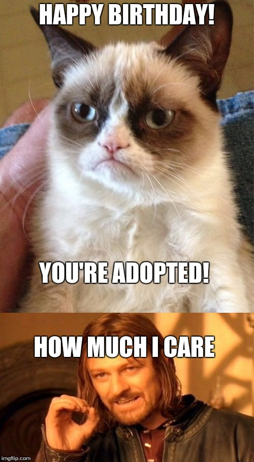 HAPPY BIRTHDAY! YOU'RE ADOPTED! HOW MUCH I CARE | made w/ Imgflip meme maker