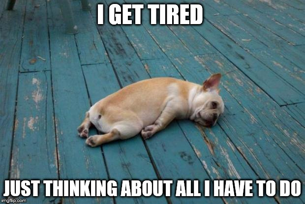 The struggle is real |  I GET TIRED; JUST THINKING ABOUT ALL I HAVE TO DO | image tagged in sleepy dog | made w/ Imgflip meme maker