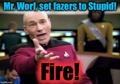 Picard Wtf Meme | Mr. Worf, set fazers to Stupid! Fire! | image tagged in memes,picard wtf | made w/ Imgflip meme maker