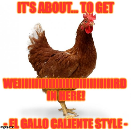 IT'S ABOUT... TO GET WEIIIIIIIIIIIIIIIIIIIIIIIIIIIIRD IN HERE! - EL GALLO CALIENTE STYLE - | made w/ Imgflip meme maker