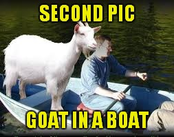 SECOND PIC GOAT IN A BOAT | made w/ Imgflip meme maker