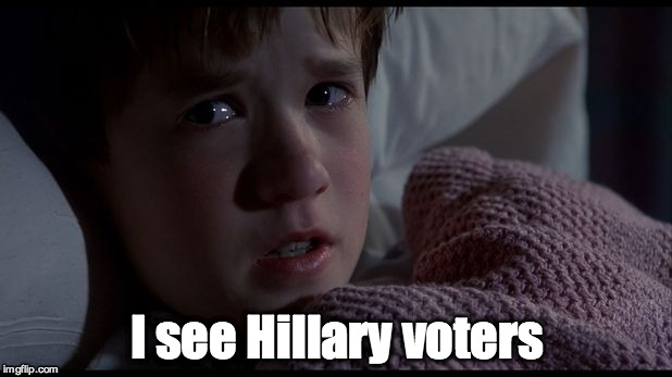 I see Hillary voters | made w/ Imgflip meme maker