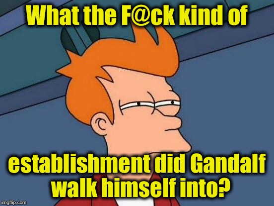 Futurama Fry Meme | What the F@ck kind of establishment did Gandalf  walk himself into? | image tagged in memes,futurama fry | made w/ Imgflip meme maker
