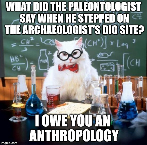 Chemistry Cat | WHAT DID THE PALEONTOLOGIST SAY WHEN HE STEPPED ON THE ARCHAEOLOGIST'S DIG SITE? I OWE YOU AN ANTHROPOLOGY | image tagged in memes,chemistry cat | made w/ Imgflip meme maker