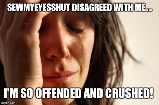 First World Problems Meme | SEWMYEYESSHUT DISAGREED WITH ME.... I'M SO OFFENDED AND CRUSHED! | image tagged in memes,first world problems | made w/ Imgflip meme maker
