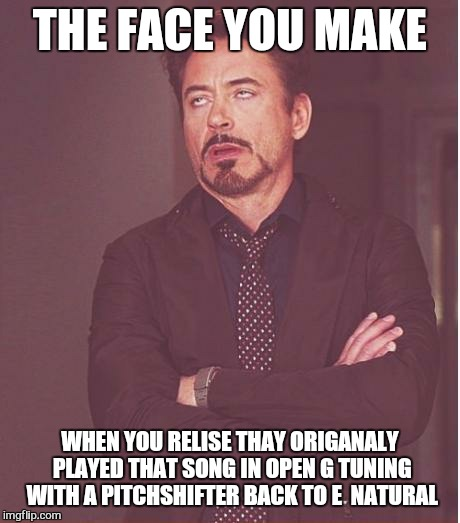 Face You Make Robert Downey Jr Meme | THE FACE YOU MAKE WHEN YOU RELISE THAY ORIGANALY PLAYED THAT SONG IN OPEN G TUNING WITH A PITCHSHIFTER BACK TO E  NATURAL | image tagged in memes,face you make robert downey jr | made w/ Imgflip meme maker