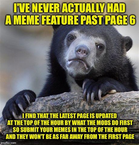 confession bear meme imgflip