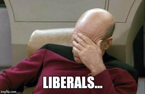 Captain Picard Facepalm Meme | LIBERALS... | image tagged in memes,captain picard facepalm | made w/ Imgflip meme maker