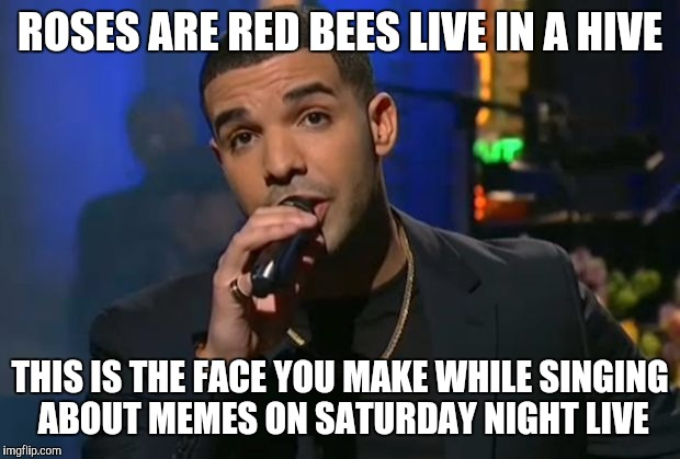 Drake meme | ROSES ARE RED BEES LIVE IN A HIVE THIS IS THE FACE YOU MAKE WHILE SINGING ABOUT MEMES ON SATURDAY NIGHT LIVE | image tagged in drake meme | made w/ Imgflip meme maker