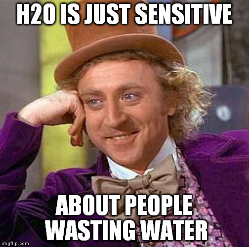 Creepy Condescending Wonka Meme | H2O IS JUST SENSITIVE ABOUT PEOPLE WASTING WATER | image tagged in memes,creepy condescending wonka | made w/ Imgflip meme maker