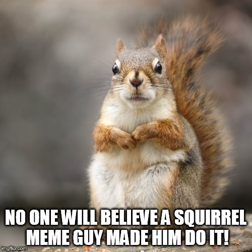 NO ONE WILL BELIEVE A SQUIRREL MEME GUY MADE HIM DO IT! | made w/ Imgflip meme maker