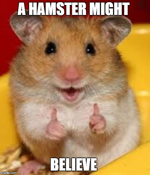 Thumbs up hamster  | A HAMSTER MIGHT BELIEVE | image tagged in thumbs up hamster | made w/ Imgflip meme maker