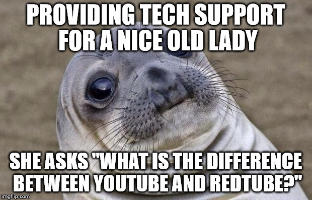 "Awkward Moment Sealion Meme | PROVIDING TECH SUPPORT FOR A NICE OLD LADY SHE ASKS ""WHAT IS THE DIFFERENCE BETWEEN YOUTUBE AND REDTUBE?"" 