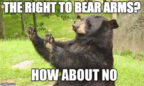 The 2nd Amendment is cruel to bears |  THE RIGHT TO BEAR ARMS? | image tagged in memes,how about no bear | made w/ Imgflip meme maker